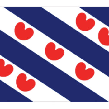 Friese vlag 40x60cm LT.27.201.040.C