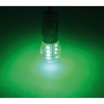 Ledlamp groen BAY15D ongelijkzijdig dubbelpolig  LT.B